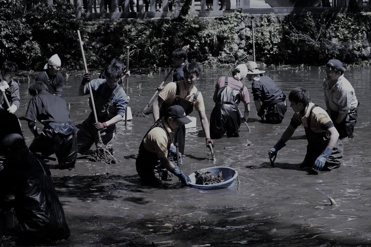 出羽三山神社 鏡池・境内掃除奉仕の参加申込みのイメージ